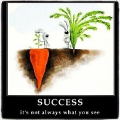 Success – It's not always what you see.