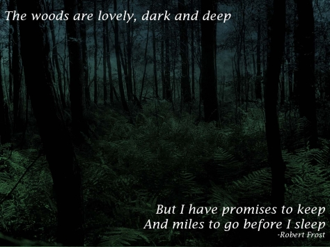 The woods are lovely, dark and deep, but i have promises to keep, and miles to go before i sleep - Robert Frost